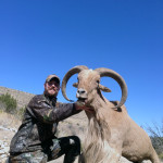 monster-New-Mexico-Aoudad-sheep-web
