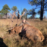 New-Mexico-Unit-16-Elk-web