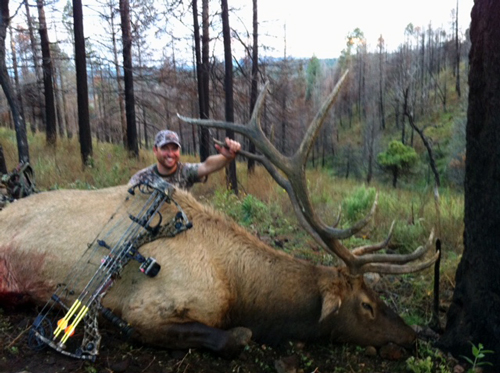 New Mexico Guided Elk Hunts In Unit 16a 16d 16c: Unit 34 New Mexico Elk Map At Infoasik.co