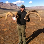 New Mexico Ibex and Nevada sheep