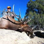 Unit 2 elk hunting New Mexico