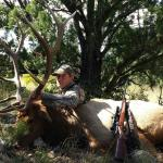 Unit 36 late rifle elk hunting