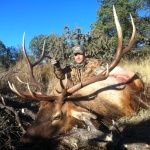 late season New Mexic Elk hunt