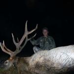 unit 36 rifle elk hunting