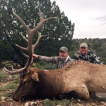 guided elk hunt new mexico
