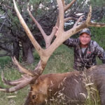 New Mexico giant 400 plus points elk