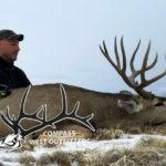 unit 2C mule deer