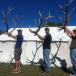 unit 34 guided elk hunting camps