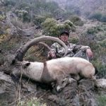 Guided rifle hunting Ibex New Mexico