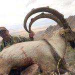 New Mexico ibex hunting with a rifle