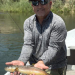 NM-trout-fishing