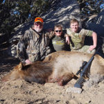 New-Mexico-cow-elk-hunting