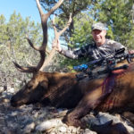 bow-hunt-new-mexico