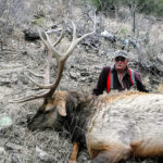 chama-elk-new-mexico-guides