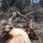 december-guided-elk-in-new-mexico