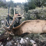 muzzleloader-hunting