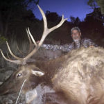 unit-30-new-mexico-elk