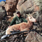 new-mexico-sheep-hunting