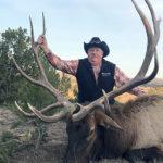 350-bulls-new-mexico