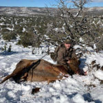 cow-elk-guides