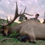 elk-hunting-3