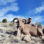 New-Mexico-Aoudad-hunting-unit-29-30