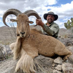 Texas-trophy-aoudad-hunting