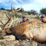 new-mexico-elk