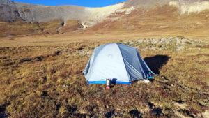 Sheep-camp-Colorado-S21