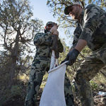 loading-up-a-new-mexico-elk-in-unit-34-rifle-hunt