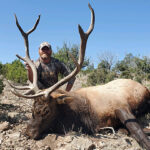 New-Mexico-elk-hunting