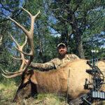 New-Mexico-elk-seasons
