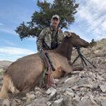 cow-elk-guides