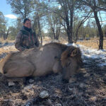 cow-elk-hunting-guides