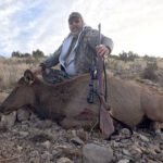cow-elk-hunting-new-mexico