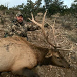 elk-hunting-in-unit-34-New-Mexico