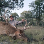 elk-in-new-mexico-with-compass-west-outfitters