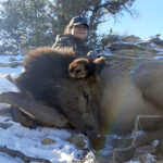new-mexico-cow-elk-hunting-guides