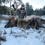 private-land-elk-hunts-in-new-mexico