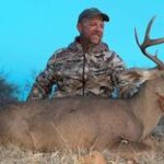 coues deer in Mexico