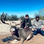 old-mexico-mule-deer
