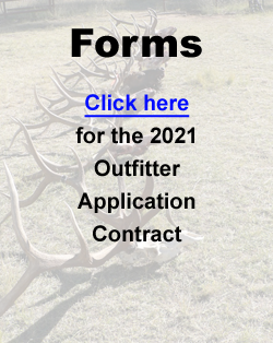 Forms-2021